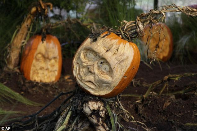 Neighbour from hell: You wouldn't want to see this foul vegetable peering up at you from next door's garden