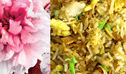 Fried Rice Collage