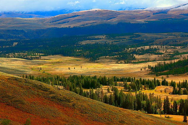 IMG_6129 Autumn Morning, Yellowstone National Park