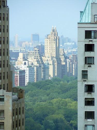 Peek-a-boo, Central Park!