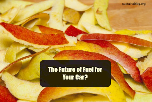 Running Your Car On Apple Peels? The Sodium-Ion Battery That Harnesses Food Waste - Sustainablog