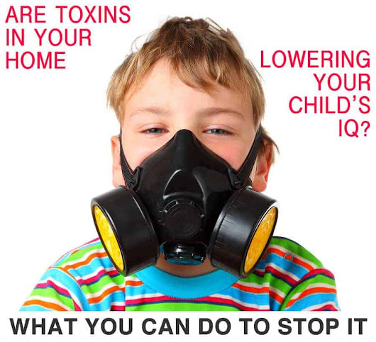 Top 10 Toxins that May Be Lowering Your Child's IQ Right Now