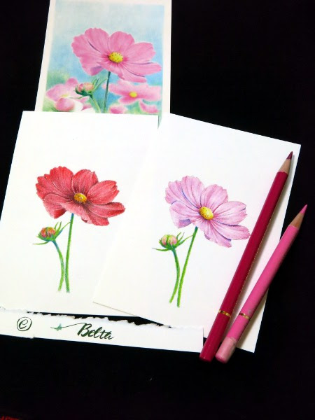 Beltaのcolored Pencil Gallery 色鉛筆ギャラリー 色鉛筆画塗り絵