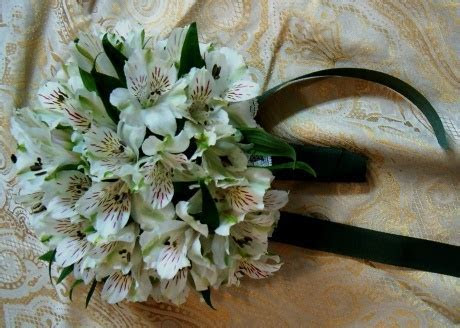 125 best images about Alstroemeria Wedding Flowers on