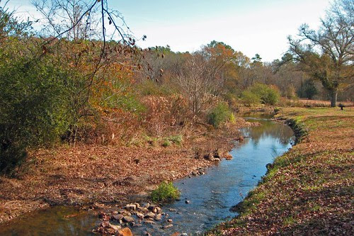 Prarie Creek