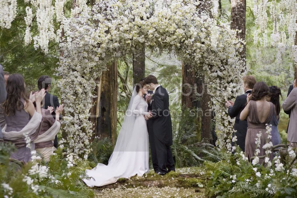 photo Twilight-Breaking-Dawn-Wedding-Dress-Kristen-Stewart-9.jpg