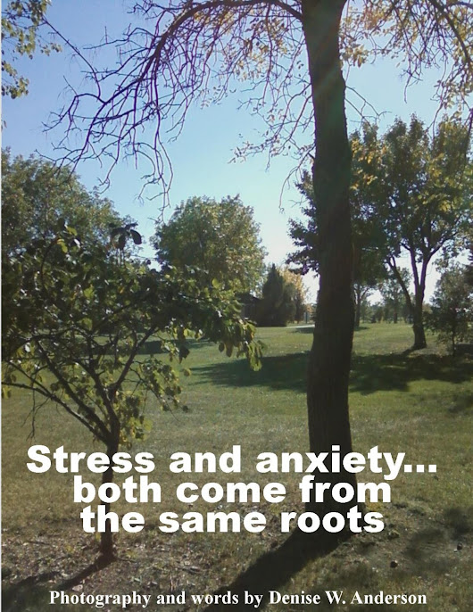 How Can I tell if it is Stress or Anxiety?