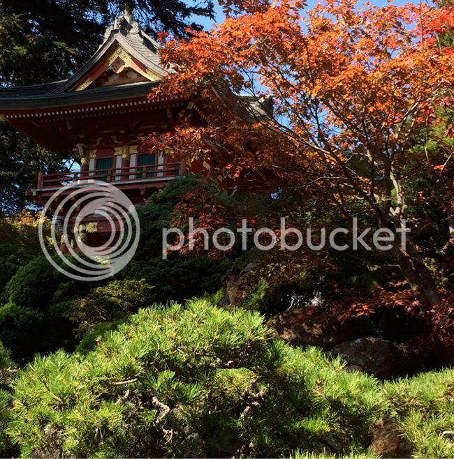 Japanese Tea Garden at Golden Gate Park