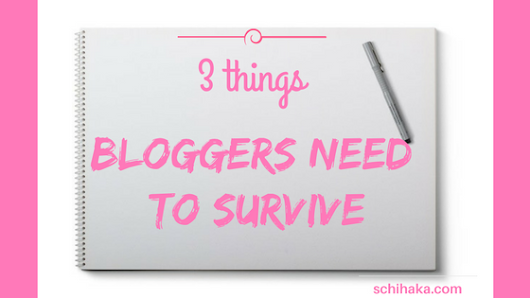 3 things bloggers need to survive.