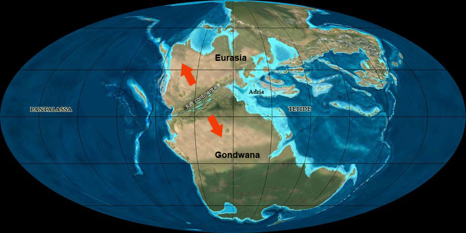 Pangea Triassica