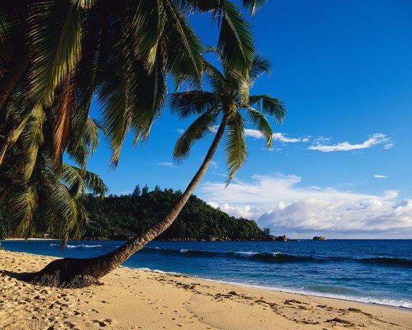seychelles islands 10 Beautiful Seychelles Islands