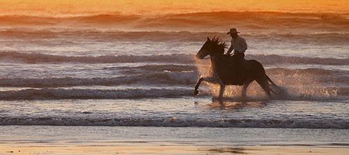 """""""Cowboy Splash"""""""