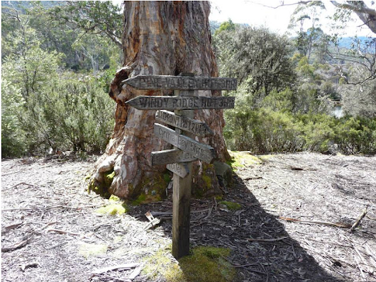 Traipsing Tasmania's Overland Track (Part 2) – Bright Lights of America