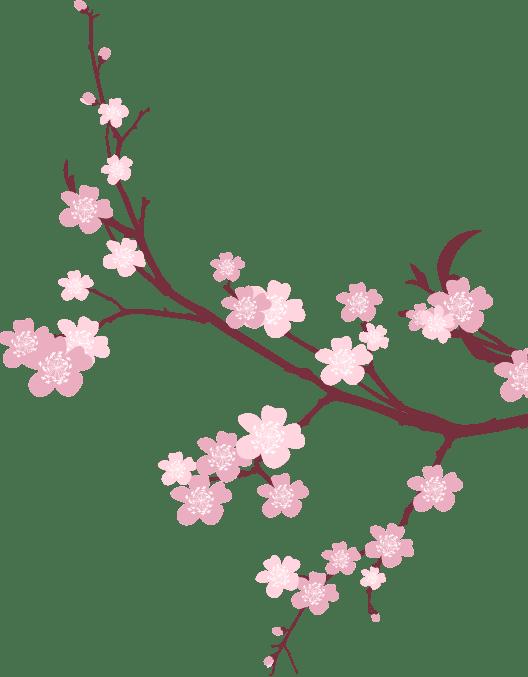 Transparent Background Translucent Flower Clipart