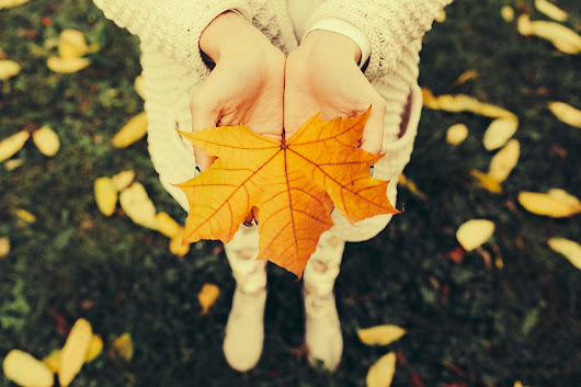 How Topics Like Fall Color Change Can Increase Your Impact - GovDelivery