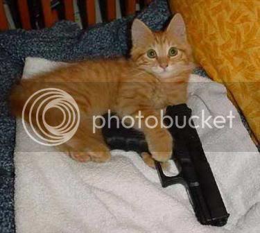 http://i48.photobucket.com/albums/f208/loaded_chamber/flyers/cat_holds_gun_3755B15D.jpg