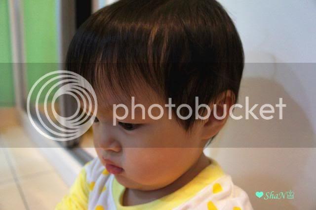photo 1_zpsbb4d5915.jpg