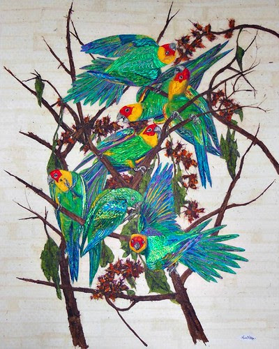 carolina-parakeets-paper-collage