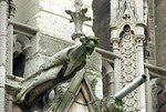 Notre Dame de Paris, Gargoyle