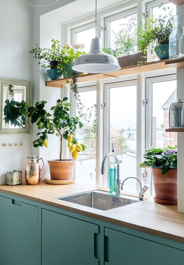 20 Modern Plant Shelf Ideas For Small Space   HomeMydesign