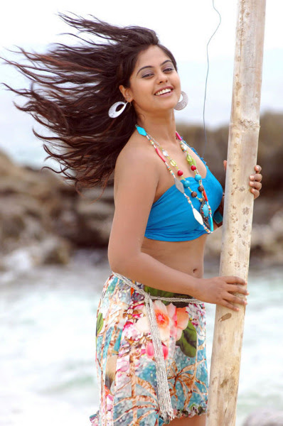 bindu madhavi latest hot photos 1570 Bindu Madhavi Hot Photos