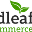 Free SpringSource Webinar: Broadleaf Commerce v3.0