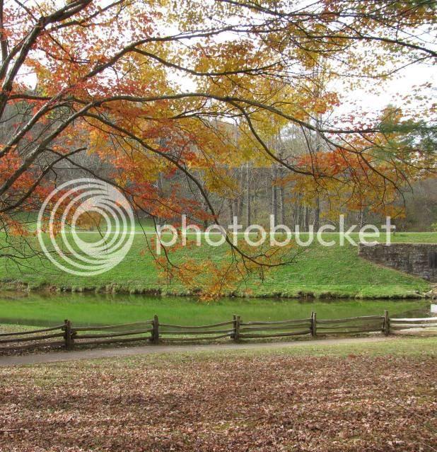 photo autumnaroundhome027.jpg