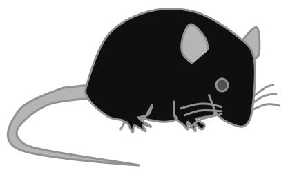 パワーポイントを使ってマウスのイラストを描く方法 生物系の英語