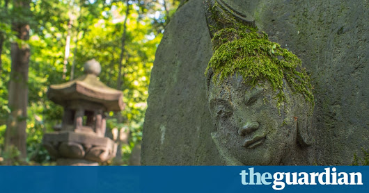 Moss may prove cheap city pollution monitor, study finds | Environment | The Guardian