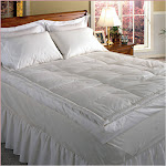 """Blue Ridge 5"""" Down Pillowtop Featherbed Queen White"""