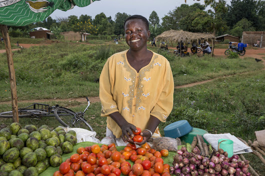 World Food Day: Prioritizing agriculture, food security, and nutrition to fight hunger | ONE