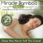 As Seen On TV Miracle Bamboo Pillow, Off-White, Queen