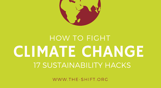 17 sustainability hacks to fight climate change [infographic]