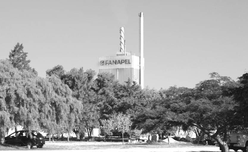 Fábrica Nacional de Papel SA (Fanapel), en Juan Lacaze, Colonia. Foto: Pablo Vignali (archivo, enero de 2014)