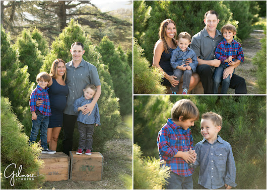 Holiday Family Portraits | Mini Sessions |Christmas Tree Lot