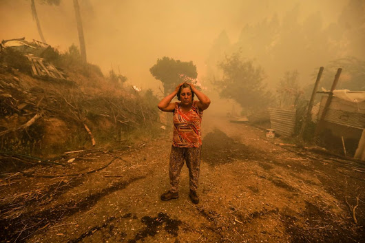 Portugal forest fire - The Boston Globe
