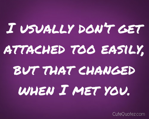 I Usually Dont Get Attached Too Easily But That Changed When I Met