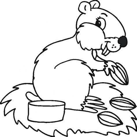 home life weekly animal coloring pages
