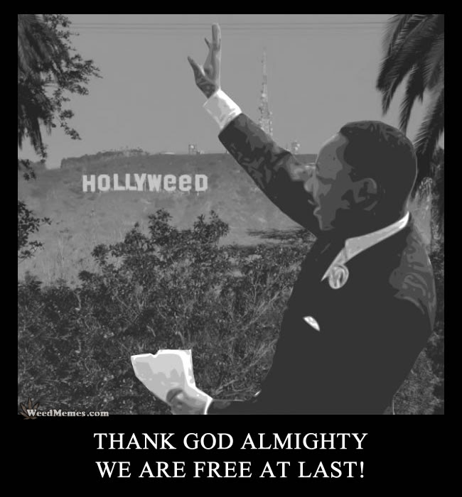 Hollyweed Sign Pic California Weed Free At Last Mlk Quote Weed Memes