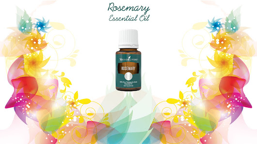 Rosemary Essential Oil | One Drop At A Time Essential Oils