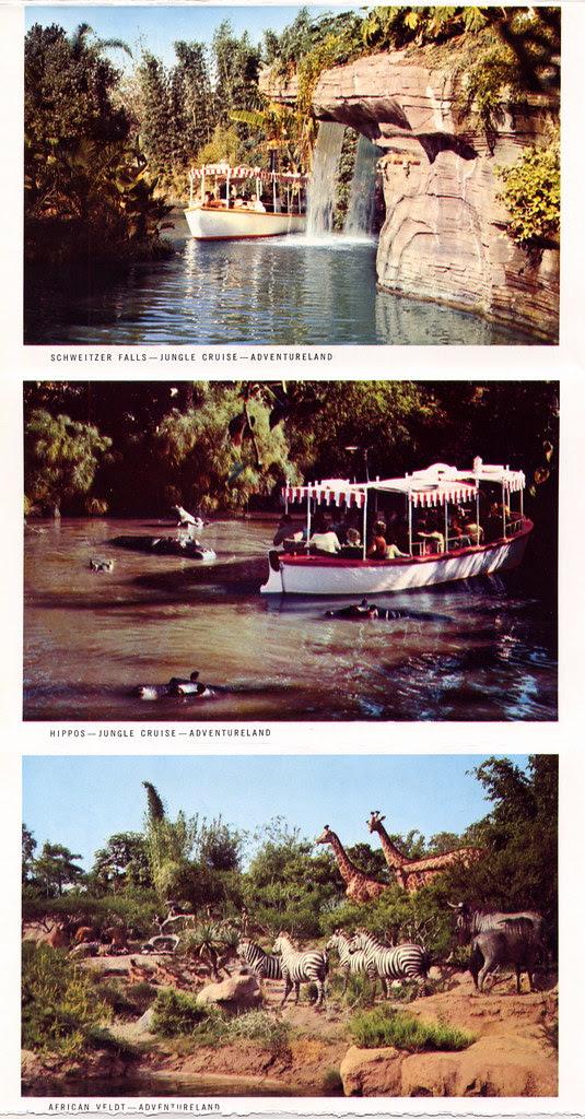 This is Disneyland 5