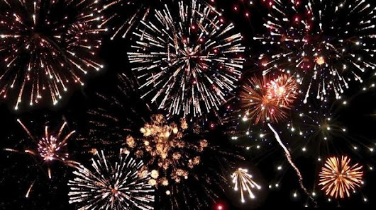 July 4th safety tips for pets: Help your dogs, cats handle fireworks