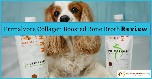 Health Benefits of Bone Broth for Dogs | Primalvore Collagen Boosted Bone Broth Review ~ Raising Your Pets Naturally with Tonya Wilhelm