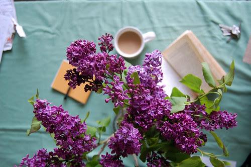 lilacs (and tea)