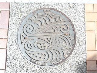 Manhole Cover, Wellington