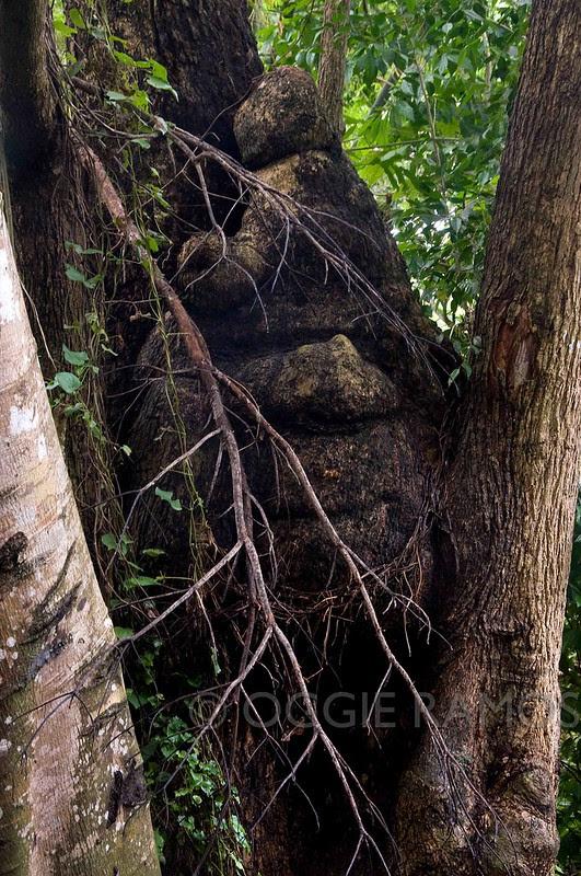 Guimaras Costa Aguada Wooden Face