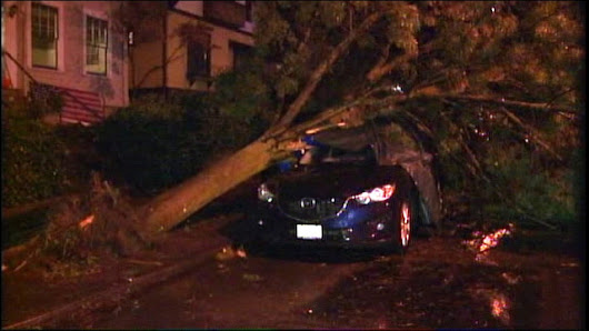 Heavy rain, howling winds cause widespread damage