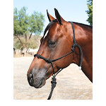 Professionals Choice Clinician Halter with 15 Foot Lead 15 Foot Lead, Black