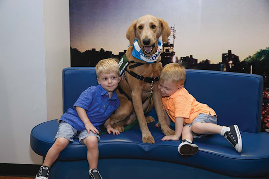 A Full-Time Canine Companion Joins Kravis | Inside Mount Sinai