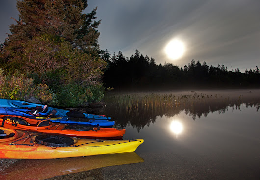 Bioluminescence Kayak Tour and Other Cool Date Ideas
